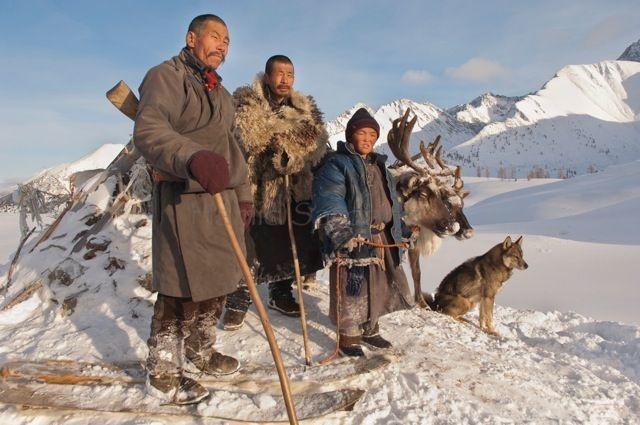 Dukhad treenivad lisaks põhjapõtradele ka hunte. Foto: Hamid Sardar-Afkhami, shareably.net