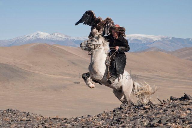 Lisaks huntidele treenivad dukhad ka kaljukotkaid, keda kasutavad edukalt jahipidamisel. Foto: Hamid Sardar-Afkhami, shareably.net